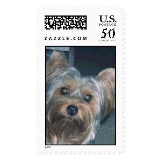 YORKSHIRE TERRIER PUPPY POSTAGE