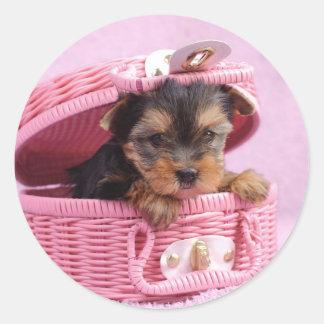 Yorkshire terrier puppy classic round sticker