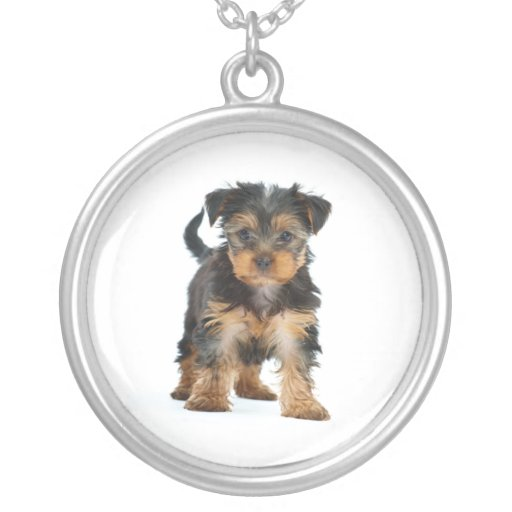 yorkshire terrier round pendant necklace