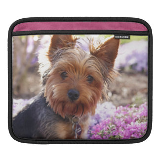 Yorkshire Terrier Sleeve For iPads