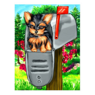 Yorkshire Terrier Special Delivery Postcard