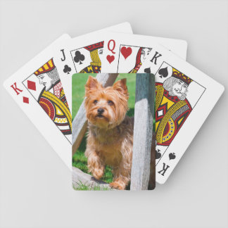 Yorkshire Terrier standing in a wagon wheel Playing Cards