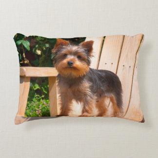 Yorkshire Terrier standing on wooden chair Accent Pillow