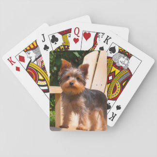 Yorkshire Terrier standing on wooden chair Playing Cards