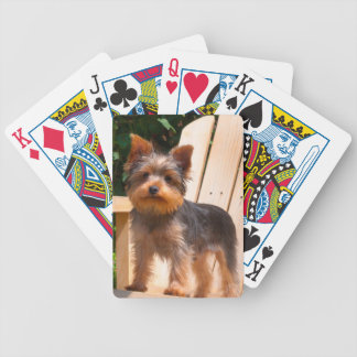 Yorkshire Terrier standing on wooden chair Bicycle Playing Cards