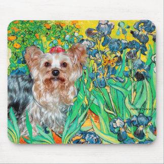 Yorkshire Terrier (T) - Irises Mouse Pad