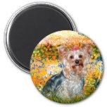 Yorkshire Terrier (t) - jardín (VG) Imán De Nevera
