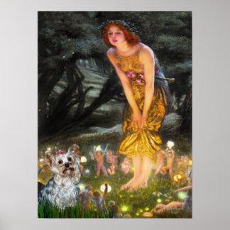 Yorkshire Terrier T - MidEve Print
