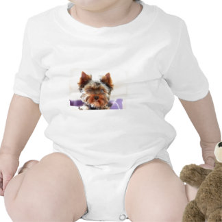 Yorkshire Terrier Romper