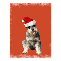 Yorkshire Terrier with Hat Postcard