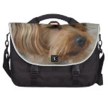 Yorkshire Terrier Zac Bags For Laptop