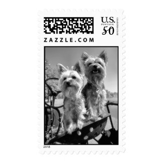 Yorkshire Terriers Black and White Postage