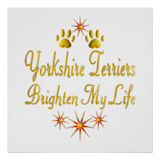 Yorkshire Terriers Brighten My Life Poster