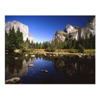 Yosemite California Postcard