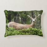 Yosemite Deer Nature Animal Photography Accent Pillow