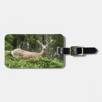 Yosemite Deer Nature Animal Photography Tag For Bags