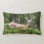 Yosemite Deer Nature Animal Photography Lumbar Pillow