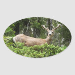 Yosemite Deer Nature Animal Photography Oval Sticker