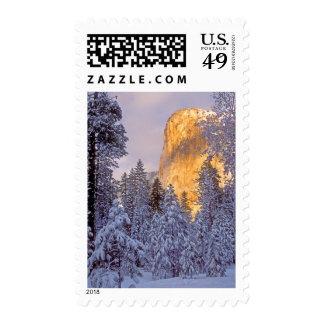 Yosemite - El Capitan lit by sunlight Postage Stamp