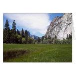 Yosemite en primavera:  Opinión del prado Felicitaciones