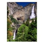Yosemite Falls 2002 Postcard