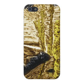 Yosemite Falls Case For iPhone SE/5/5s