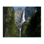 Yosemite Falls II from Yosemite National Park Acrylic Print