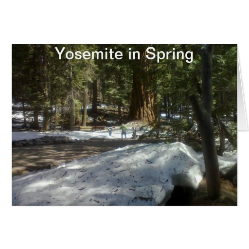 Yosemite in Spring   Card