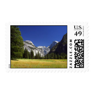 yosemite Meadows Postage Stamp