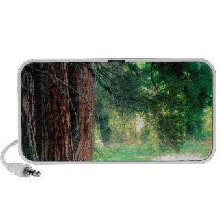 Yosemite Misty Reflections Park Speakers