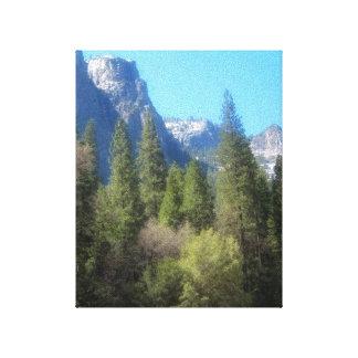 Yosemite National Park C Canvas Canvas Print