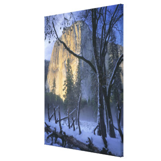 YOSEMITE NATIONAL PARK, CALIFORNIA. USA. Light Stretched Canvas Print