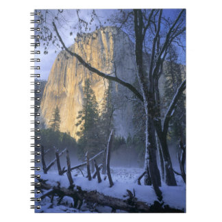 YOSEMITE NATIONAL PARK, CALIFORNIA. USA. Light Notebook