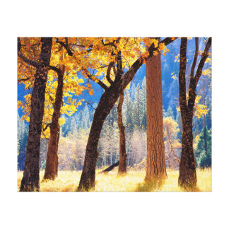 Yosemite National Park Gallery Wrap Canvas