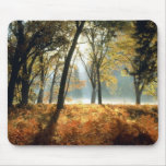 Yosemite National Park Cards and Gifts Mouse Mat