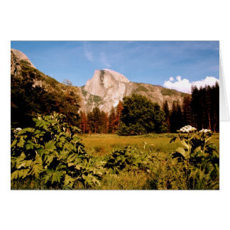 Yosemite National Park meadow card