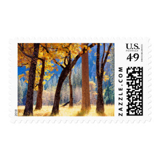 Yosemite National Park Postage