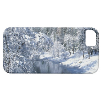 Yosemite National Park snowy valley iPhone 5 case