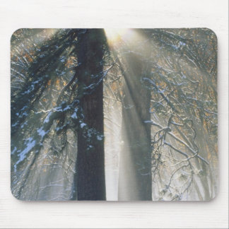 Yosemite National Park - Sun rays streaming Mouse Pad