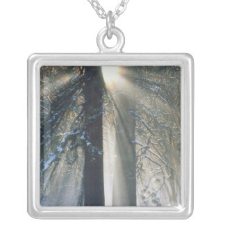 Yosemite National Park - Sun rays streaming Silver Plated Necklace