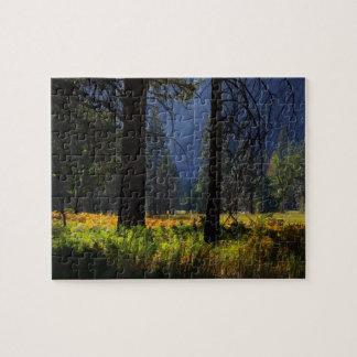 Yosemite National Park Valley Floor Jigsaw Puzzle
