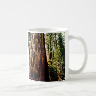 Yosemite Redwoods Coffee Mug