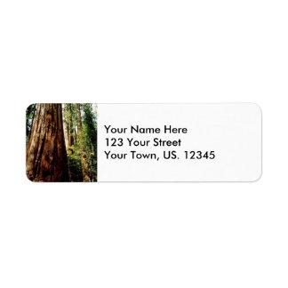 Yosemite Redwoods Label