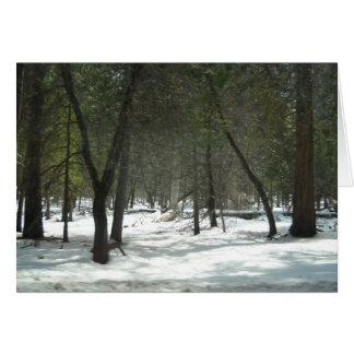 Yosemite Spring1 Card