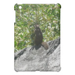 Yosemite Squirrel Nature Animal Photography Case For The iPad Mini