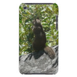 Yosemite Squirrel Nature Animal Photography iPod Touch Case