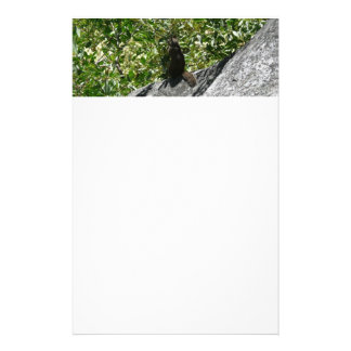 Yosemite Squirrel Nature Animal Photography Stationery