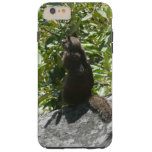 Yosemite Squirrel Nature Animal Photography Tough iPhone 6 Plus Case