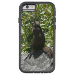 Yosemite Squirrel Nature Animal Photography Tough Xtreme iPhone 6 Case