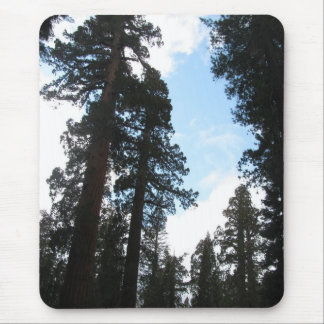 Yosemite Trees Mouse Pad